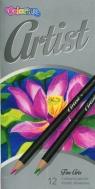 Kredki ołówkowe okrągłe COLORINO ARTIST 12 kolorów