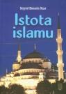 Istota islamu