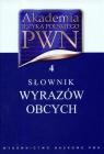 Akademia Języka Polskiego PWN Tom 4