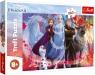 Puzzle 260: Frozen 2 - W poszukiwaniu przygód (13250)