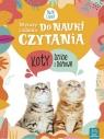 Wyrazy i zdania do nauki czytania. Tajemnice przyrody. Koty dzikie i domowe (3165)