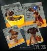 Zeszyt A5/60K/BR kratka 10 szt Cool Dog
