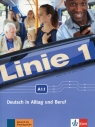 Linie 1 A1.1 Podręcznik z ćwiczeniami + DVD-ROM