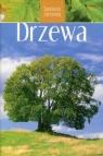 Drzewa Spotkania z przyrodą Bachofer Mark, Mayer Joachim
