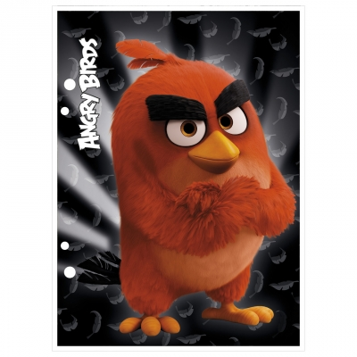 Wkład do segregatora Derform Angry Birds (WA6AB) .
