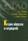 Krzywe eliptyczne w kryptografii