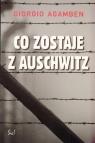 Co zostaje z Auschwitz