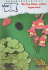 Logico Piccolo Rośliny leśne polne i ogrodowe