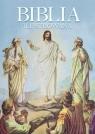 Biblia ilustrowana praca zbiorowa