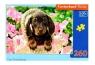 Puzzle 260: Cute Dachshund