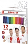 Flamastry 12 kolorów PZPN
