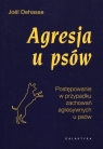 Agresja u psów