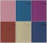 Kalendarz Nauczyciela 2016/2017 Vivella mix kolorów