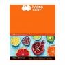 Blok artystyczny Happy Color A5 360 g 10 k. (HA 7836 1530-A10)