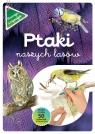 Ptaki naszych lasów zeszyt z kalką Kopiec-Sekieta Katarzyna