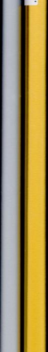 Papier ozdobny PAW Neutral srebro/złoto /200x70/AGP007601