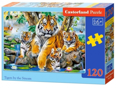 Puzzle 120: Tigers by the Stream