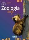 Zoologia. Tom 3. Część 3. Ssaki Błaszak Czesław