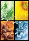 Kalendarz 2019 z ks Twardowskim 4 pory roku Grzybowski MArian