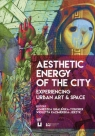 Aesthetic Energy of the City