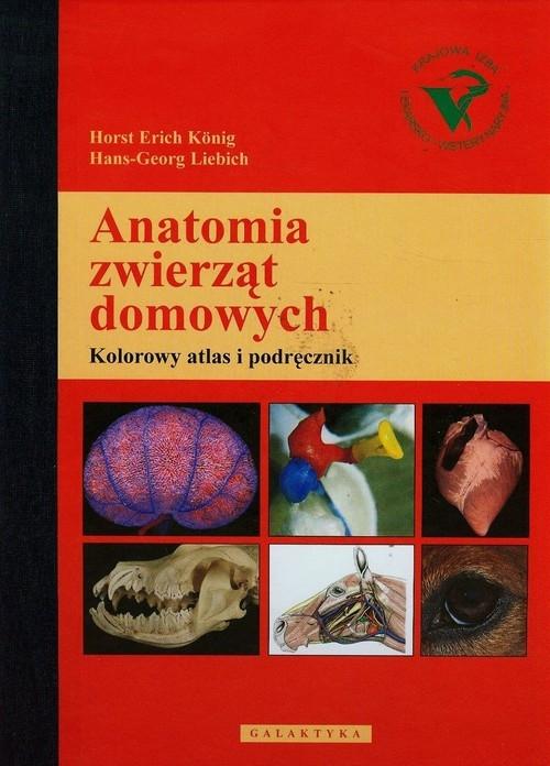 Anatomia zwierząt domowych Konig Horst Erich, Liebich Hans-Georg