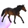 Koń rasy Quarter maści gniadej przydym. ANIMAL... (87151)