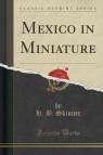 Mexico in Miniature (Classic Reprint)