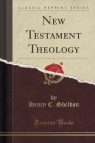 New Testament Theology (Classic Reprint)