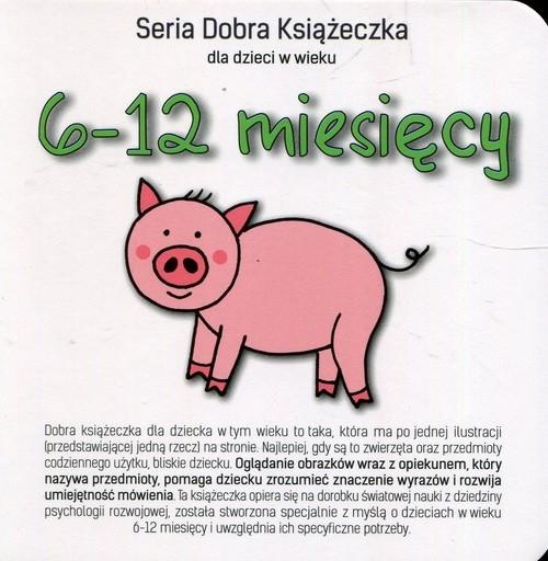 Seria Dobra Książeczka dla dzieci w wieku 6-12 miesięcy Starok Agnieszka