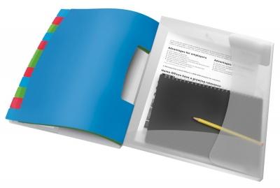Teczka z przegródkami Esselte Vivida A4 kolor: mix 12 przegródek 266 x 320 (624030)