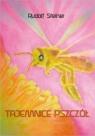 Tajemnice pszczół