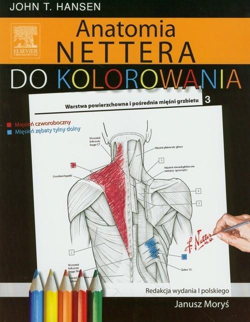 Anatomia Nettera do kolorowania Hansen John T.