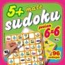 Małe sudoku 10