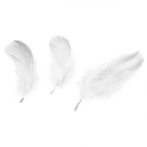 Piórka dekoracyjne, 16g - białe (414329)