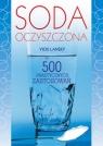 Soda oczyszczona 500 praktycznych zastosowań Lansky Vicki