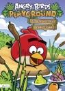 Angry Birds Playground Czerwony koloruje i łamie główkę Książka z