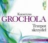 Trzepot skrzydeł (audiobook) Katarzyna Grochola