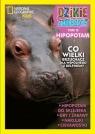 Dzikie Zwierzęta 15 Hipopotam
