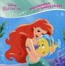 Disney Księżniczka Malowanka z naklejkami