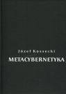 Metacybernetyka