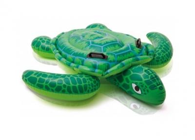 +57524+ Zółw do pływania