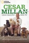 Czego nauczyły mnie psy Opowieści o czworonogach, które odmieniły moje Millan Cesar, Peltier Melissa Jo