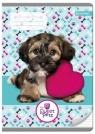 Zeszyt A5 w trzy linie 16 kartek Pies The Sweet Pets