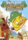 Angry Birds Playground Chuck i łamigłówki