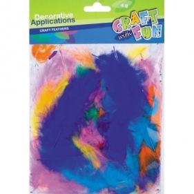 Ozdoba dekoracyjna kolorowe piórka 4g (308968)