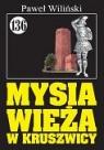Pan Samochodzik i Mysia wieża w Kruszwicy