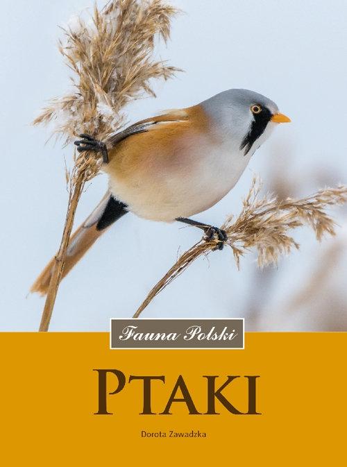 Ptaki Fauna Polski - Zawadzka Dorota - książka