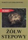 Żółw stepowy Gorazdowski Marcin Jan