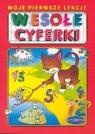 Wesołe cyferki 3-6 lat Bartoszewski Robert, Porębski Stanisław