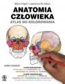 Anatomia człowieka. Atlas do kolorowania